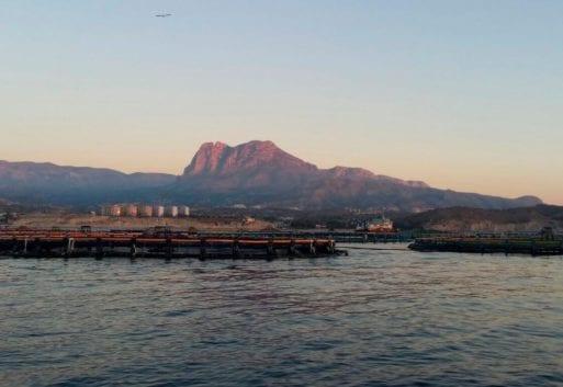 La acuicultura y el ODS 14: Protección de los océanos