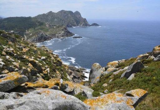 Viaje por la acuicultura: Galicia y el cultivo de Rodaballo