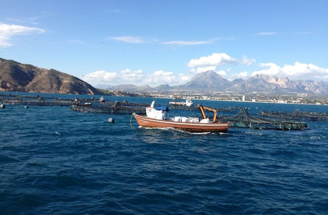 Barco de acuicultura en alta mar