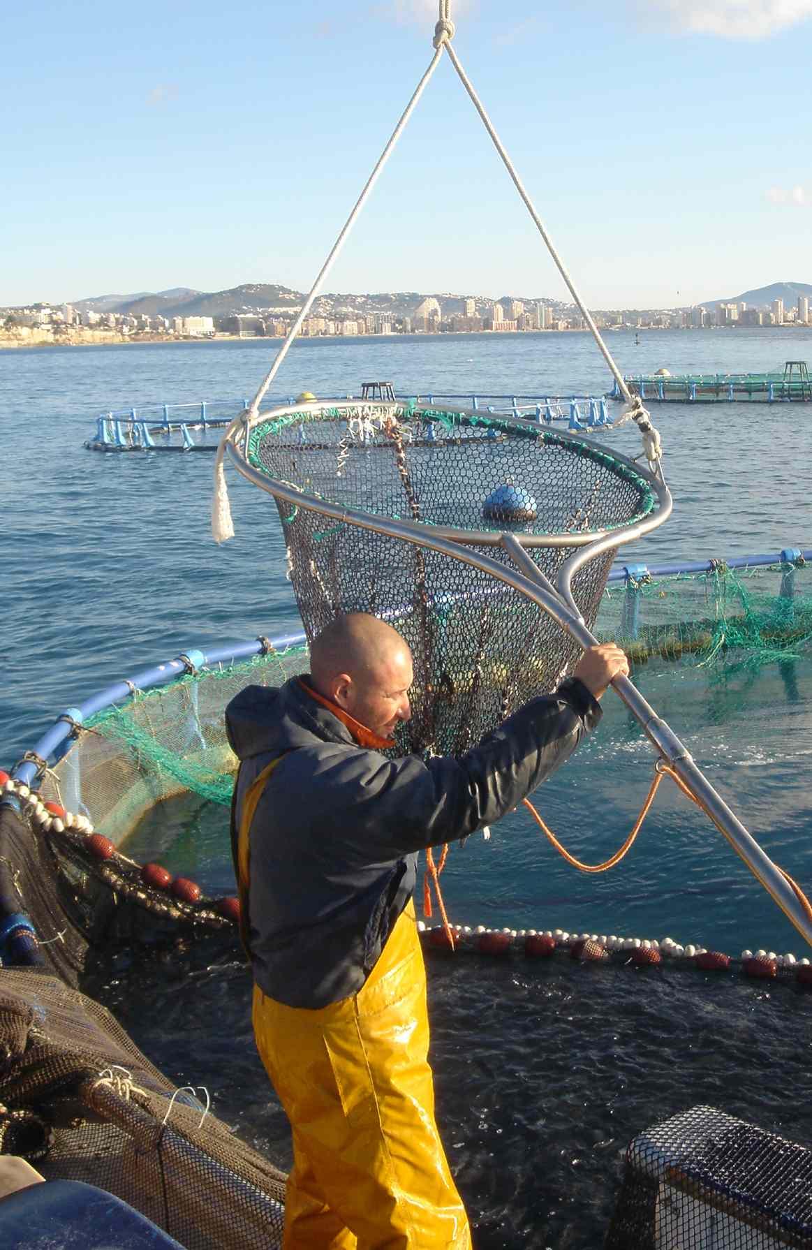 Trabajador de acuicultura