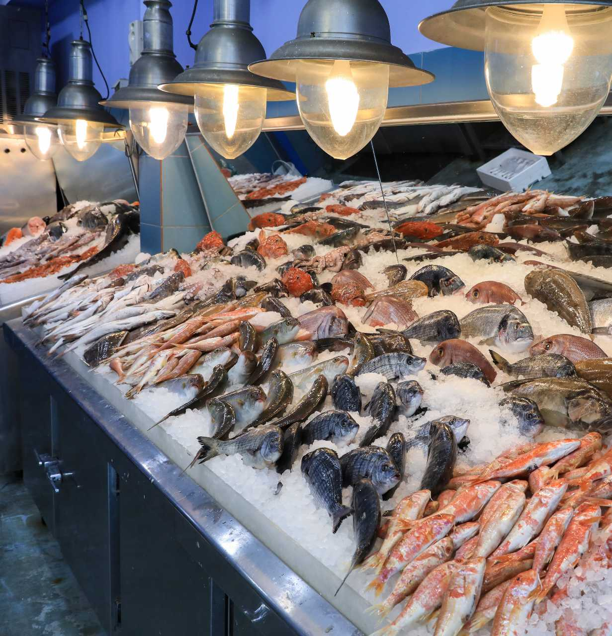 Pescadería acuicultura