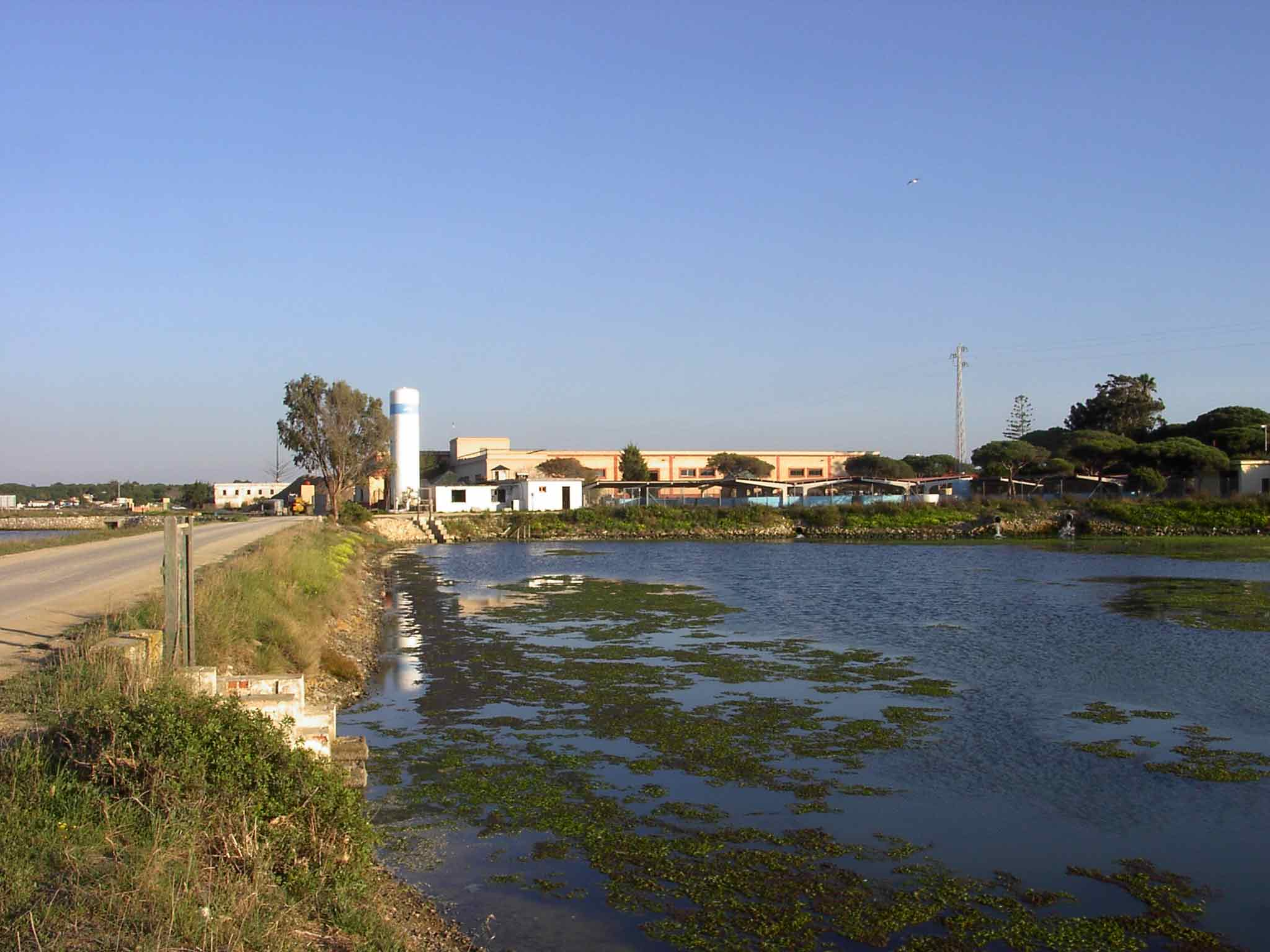 Lugar de empleo acuícola