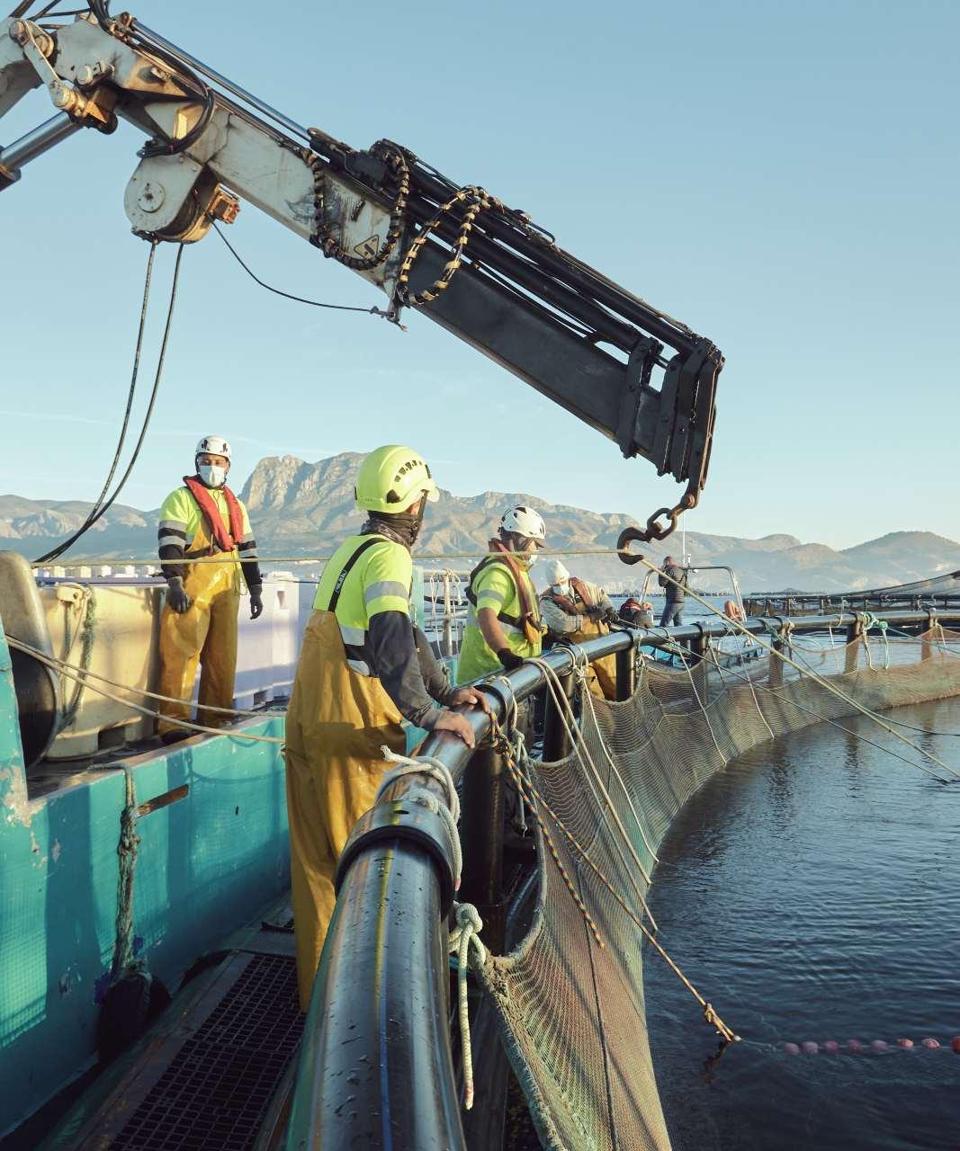 Acuicultura, una actividad por la sostenibilidad en el mar