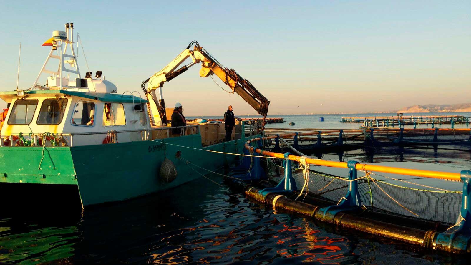 Barco trabajando en un vivero acuícola