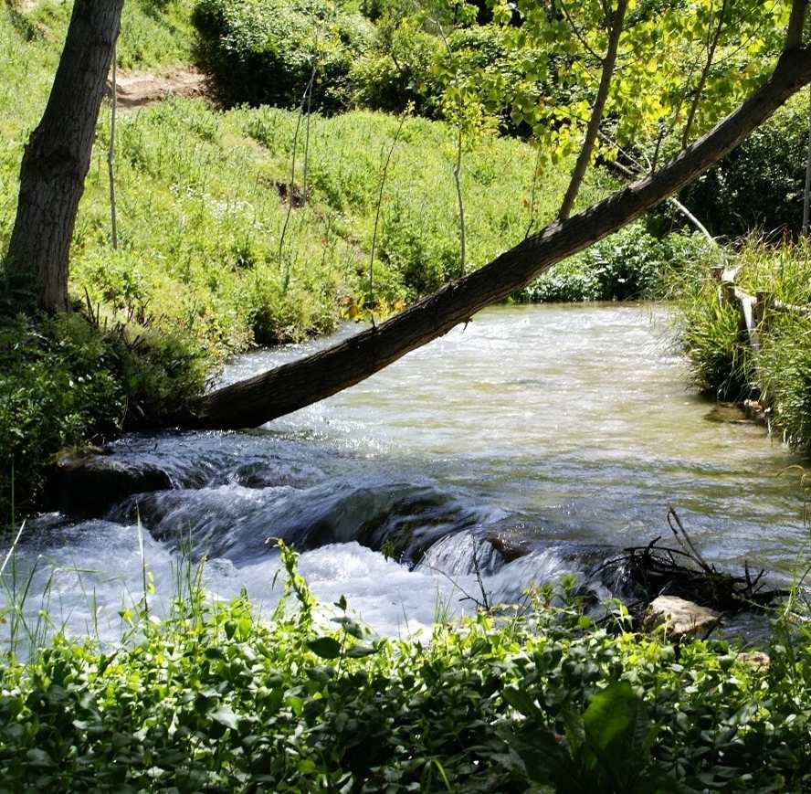 Imagen de un río donde se cultiva pescado