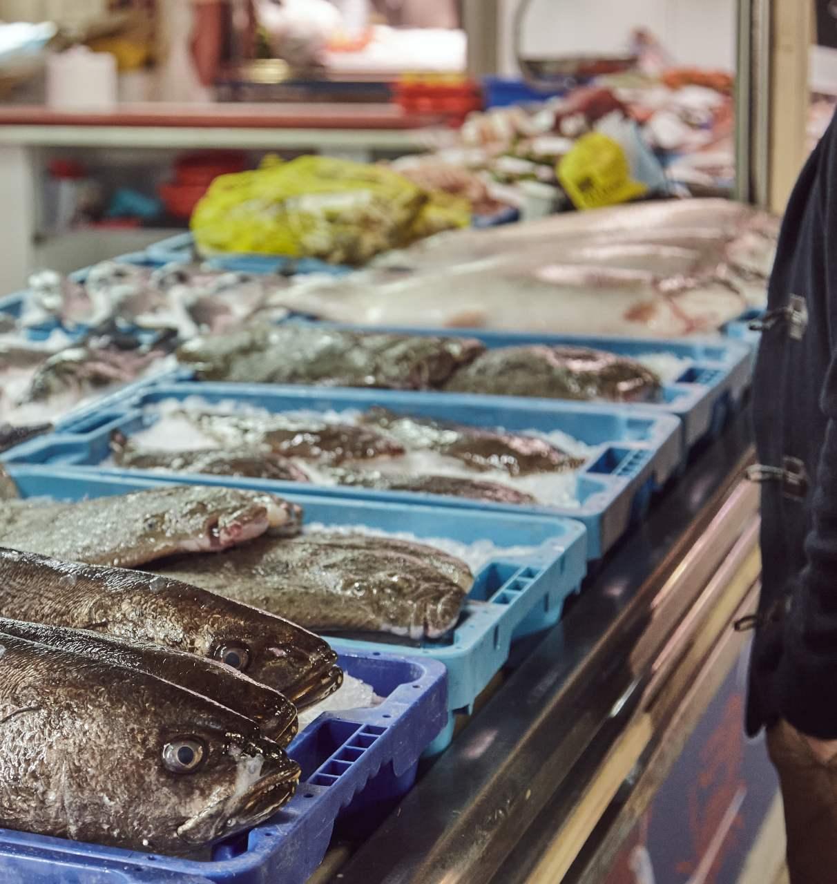 Mostrador de pescadería lleno de productos de acuicultura