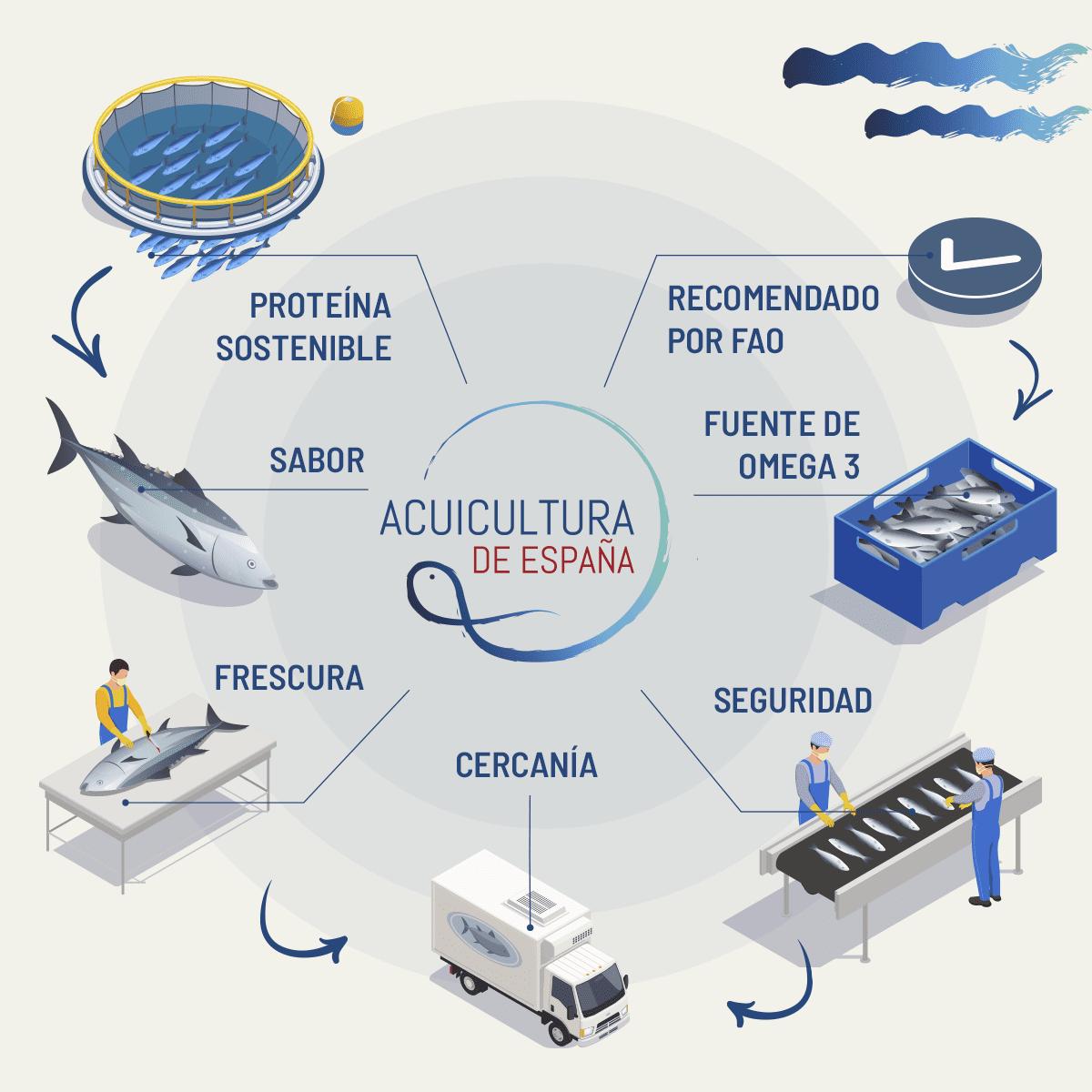infografía acuicultura de españa