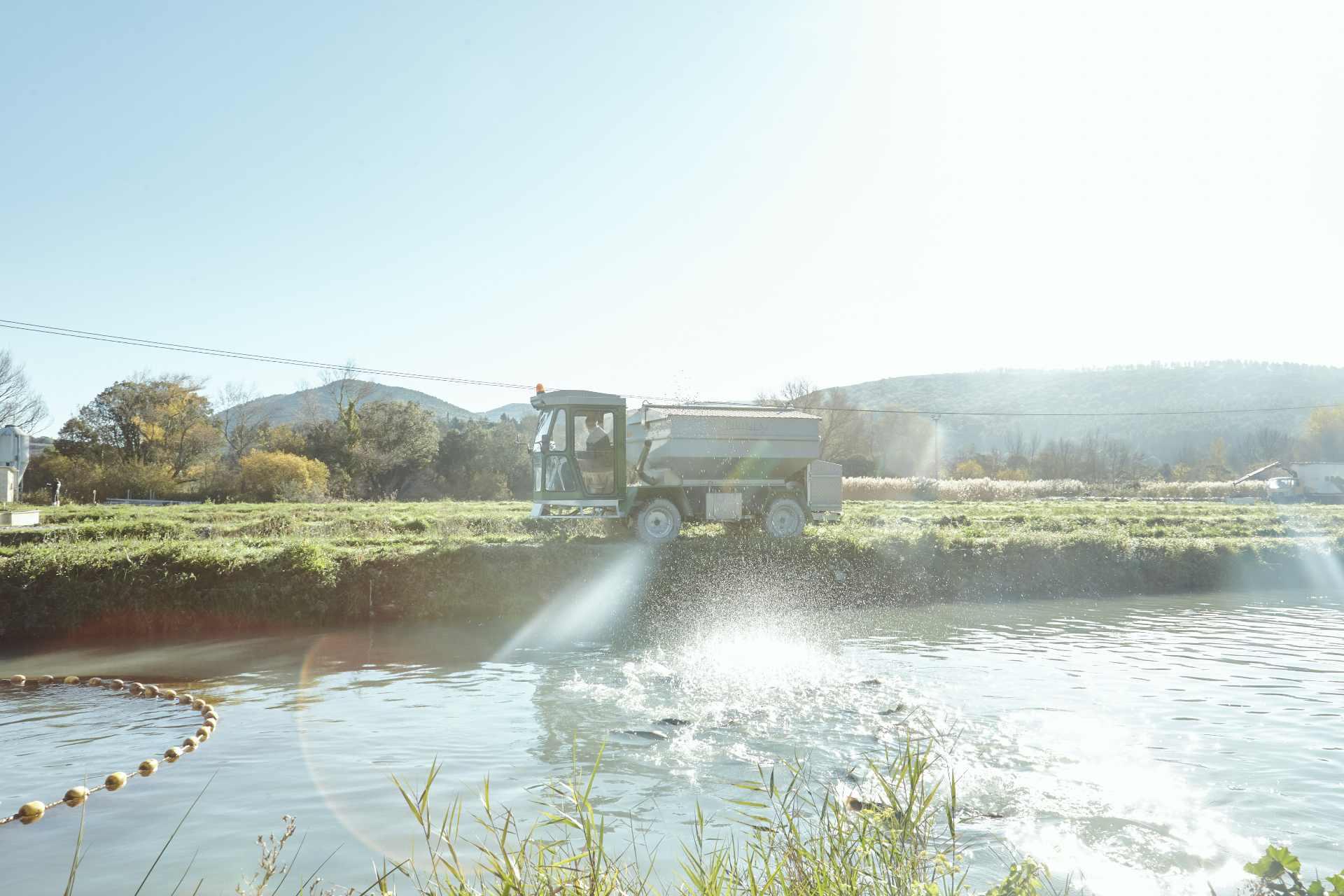 Acuicultura de España agua dulce río