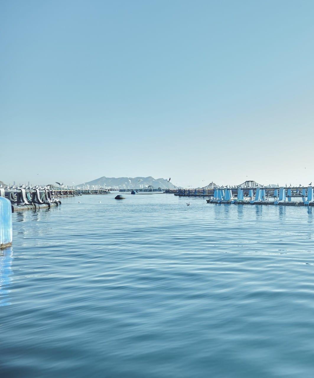 Acuicultura de españa en el mar mediterraneo