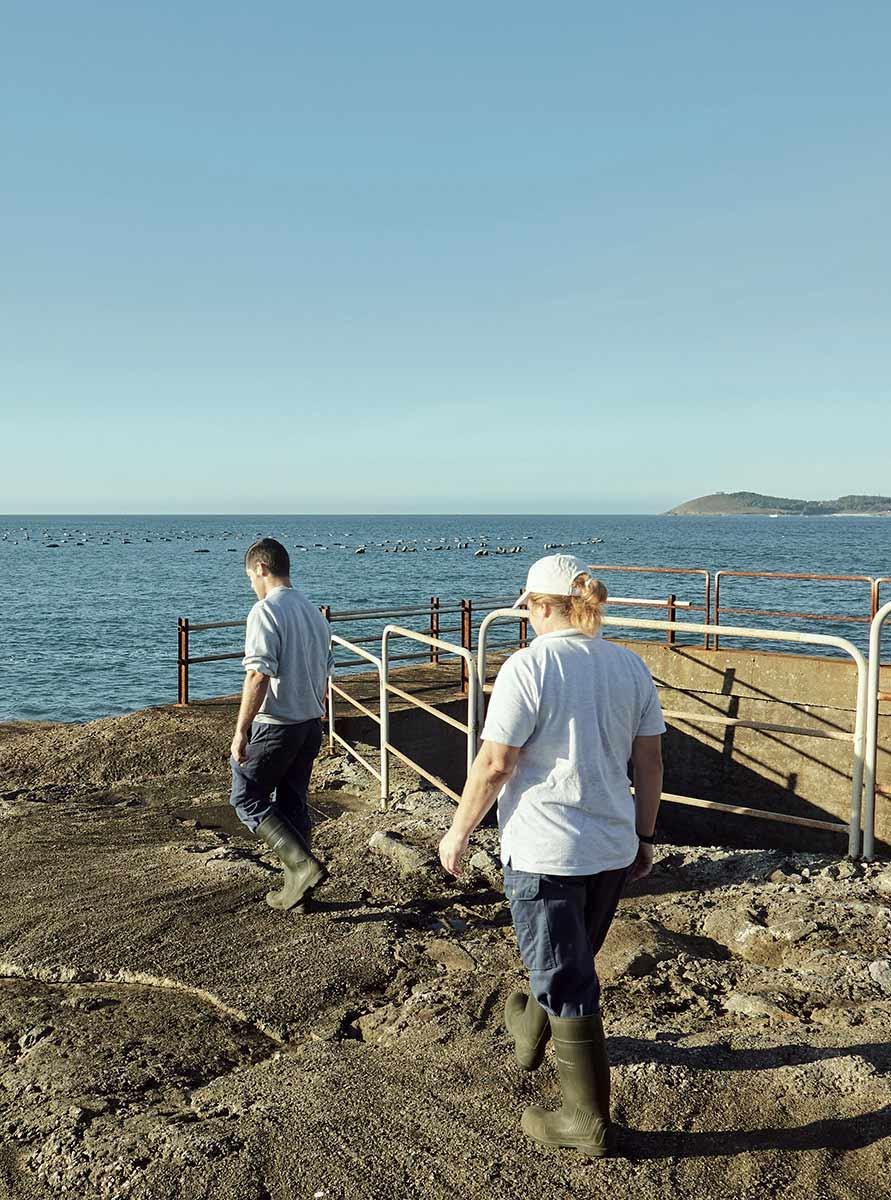 Acuicultura de España acuicultores crecimiento azul