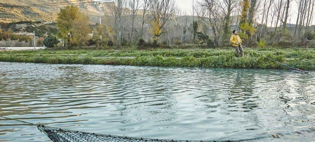acuicultura de españa rio olivan