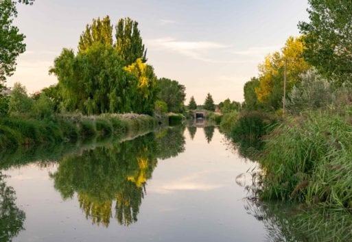 Descubre la acuicultura de Castilla y León: líder en acuicultura continental