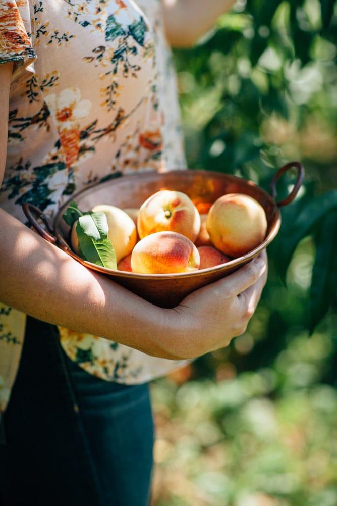 Fruta de temporada blog carlos rios para acuicultura de españa