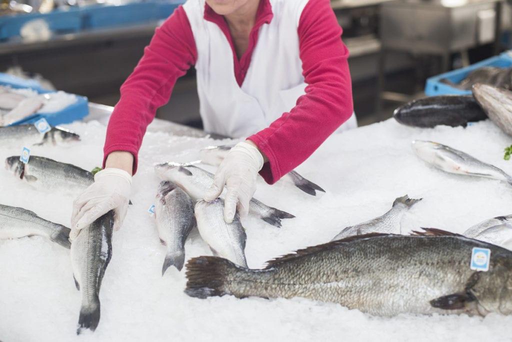 pescadera de acuicultura de españa