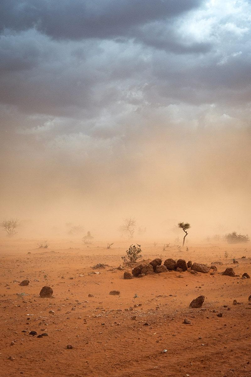 la acuicultura evita la desertificación