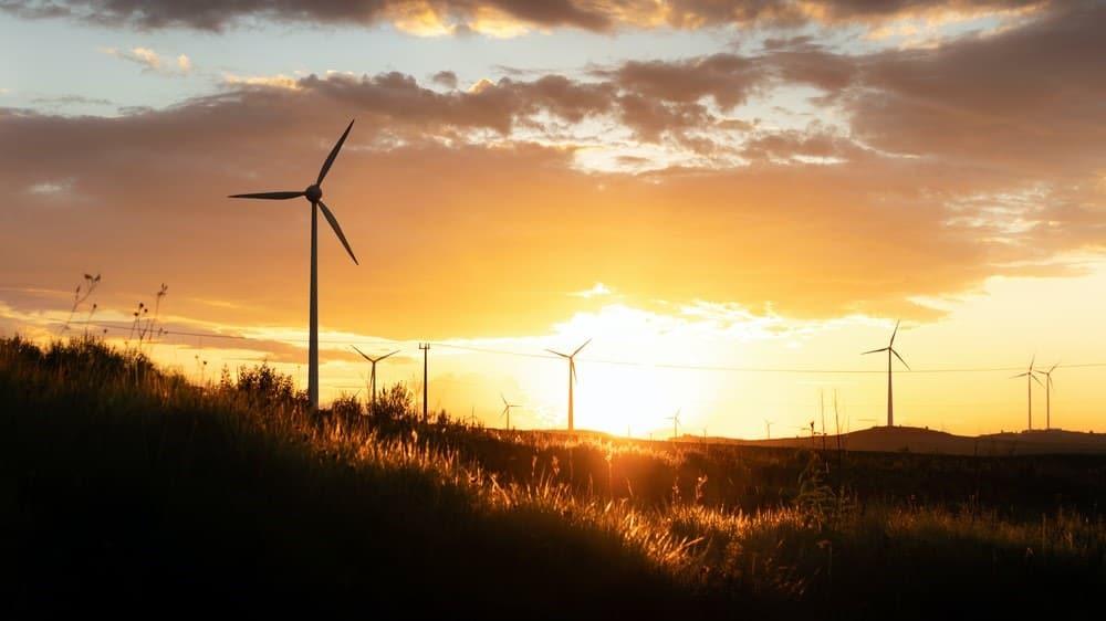 energia eolica renovable