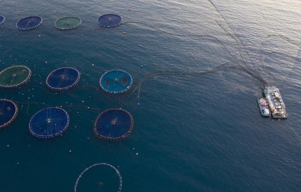 acuicultura de españa maritima
