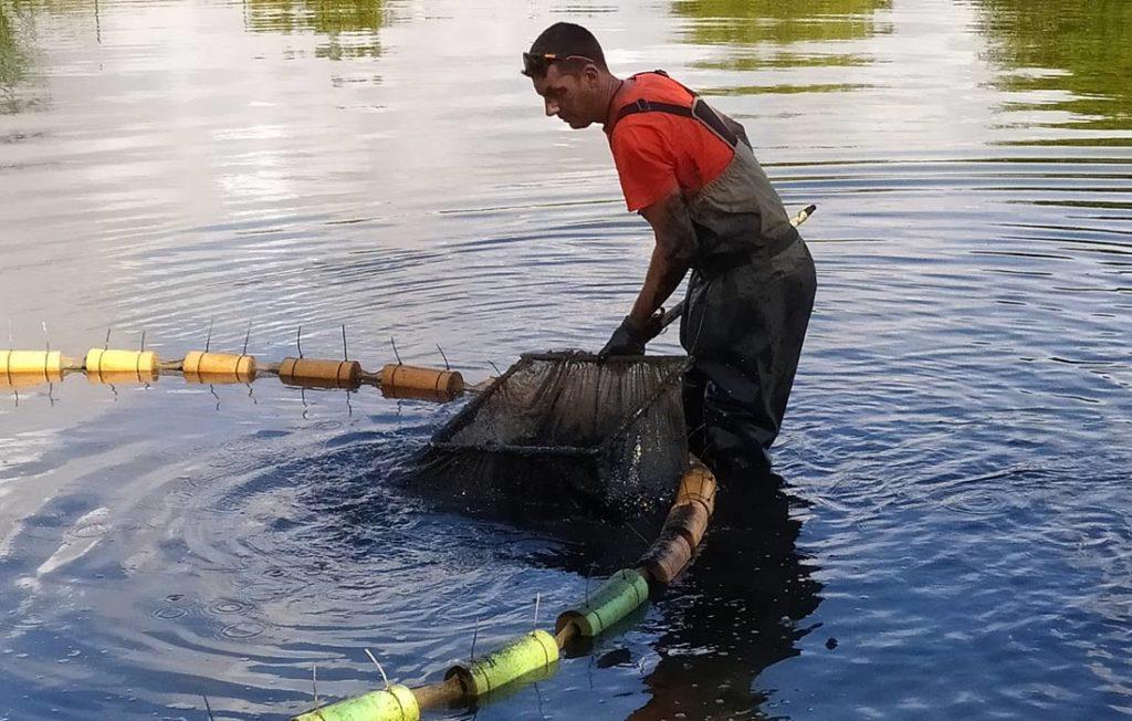manuel atanasio acuicultura de españa